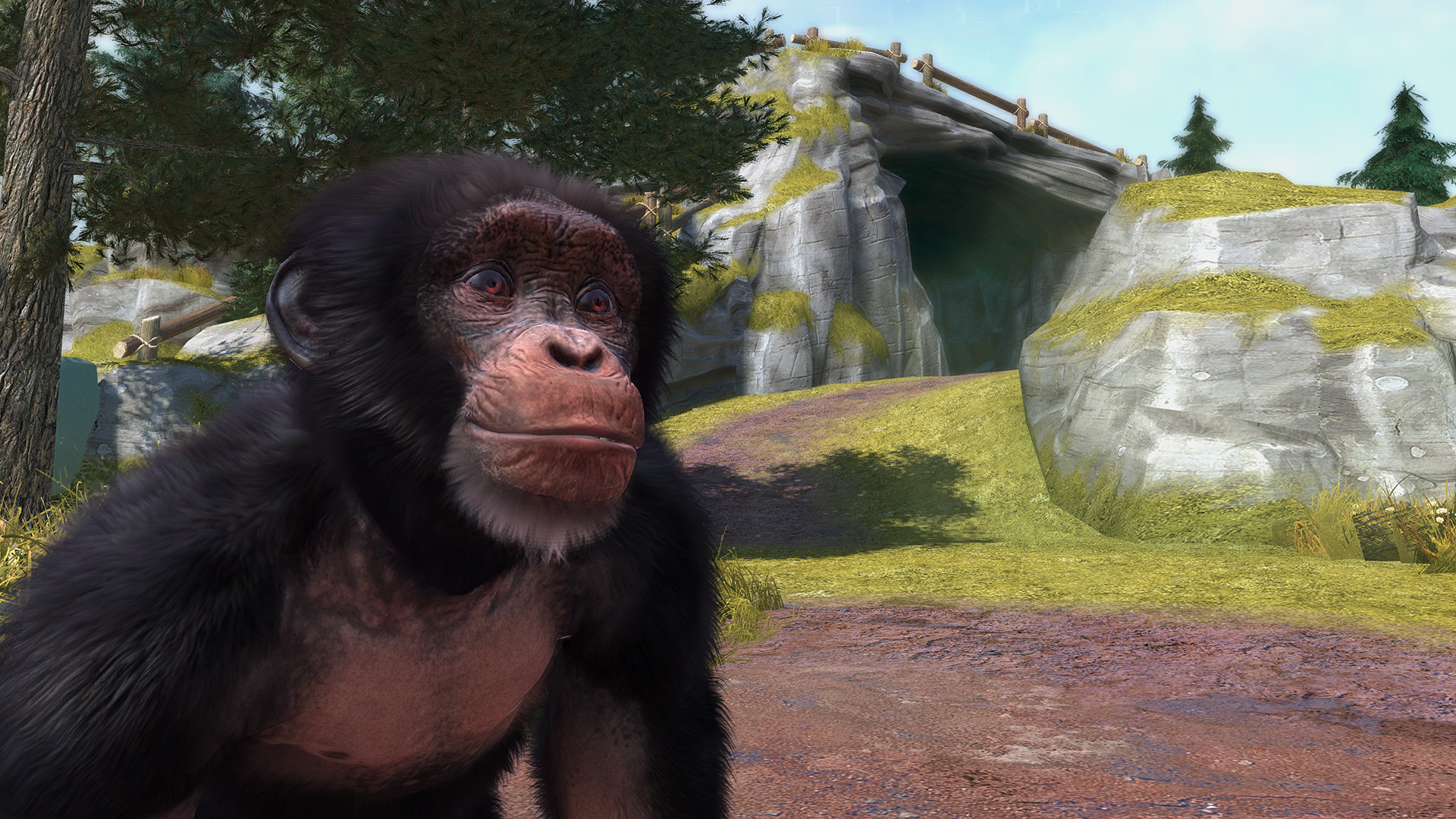 Zoo Tycoon [2013] Review – Eggplante!