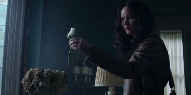Mockingjay - Footage 4