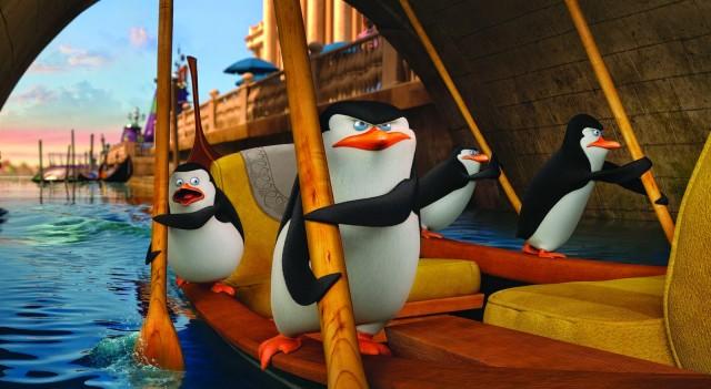 Penguins - Footage 4