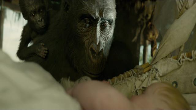 Tarzan - Footage 9